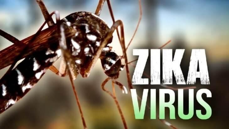 cha-verde-matcha-zika